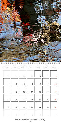 Water reflections in the harbour 2019 (Wall Calendar 2019 300 × 300 mm Square) - Produktdetailbild 3