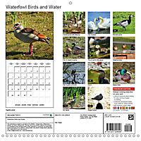 Waterfowl Birds and Water (Wall Calendar 2019 300 × 300 mm Square) - Produktdetailbild 13