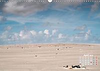 Watt'n Licht, viel Wind, wenig Meer (Wandkalender 2019 DIN A3 quer) - Produktdetailbild 4