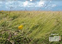 Watt'n Licht, viel Wind, wenig Meer (Wandkalender 2019 DIN A3 quer) - Produktdetailbild 8