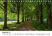 Wege durchs neue Jahr (Tischkalender 2019 DIN A5 quer) - Produktdetailbild 9