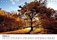 Wege durchs neue Jahr (Tischkalender 2019 DIN A5 quer) - Produktdetailbild 10