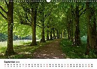 Wege durchs neue Jahr (Wandkalender 2019 DIN A3 quer) - Produktdetailbild 9