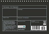Weimaraner - Ein Welpenjahr (Tischkalender 2019 DIN A5 quer) - Produktdetailbild 13
