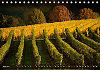 Wein - Landschaften (Tischkalender 2019 DIN A5 quer) - Produktdetailbild 4