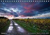 Wein - Landschaften (Tischkalender 2019 DIN A5 quer) - Produktdetailbild 12