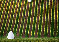 Wein - Landschaften (Wandkalender 2019 DIN A4 quer) - Produktdetailbild 1