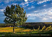 Wein - Landschaften (Wandkalender 2019 DIN A4 quer) - Produktdetailbild 6