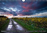 Wein - Landschaften (Wandkalender 2019 DIN A4 quer) - Produktdetailbild 12