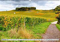 Weinregion Kaiserstuhl (Wandkalender 2019 DIN A2 quer) - Produktdetailbild 2