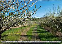 Weinregion Kaiserstuhl (Wandkalender 2019 DIN A2 quer) - Produktdetailbild 10