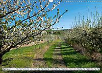 Weinregion Kaiserstuhl (Wandkalender 2019 DIN A3 quer) - Produktdetailbild 4