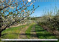 Weinregion Kaiserstuhl (Wandkalender 2019 DIN A4 quer) - Produktdetailbild 4