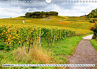 Weinregion Kaiserstuhl (Wandkalender 2019 DIN A4 quer) - Produktdetailbild 9
