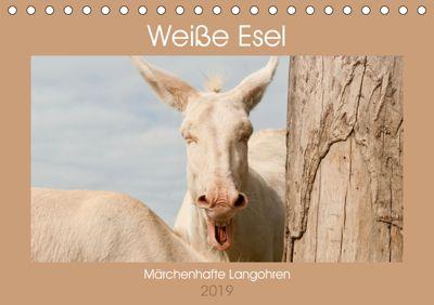 Weiße Esel - Märchenhafte Langohren (Tischkalender 2019 DIN A5 quer), Meike Bölts