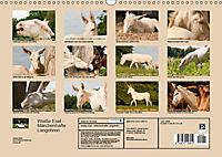 Weiße Esel - Märchenhafte Langohren (Wandkalender 2019 DIN A3 quer) - Produktdetailbild 13