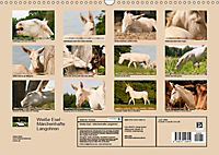 Weisse Esel - Märchenhafte Langohren (Wandkalender 2019 DIN A3 quer) - Produktdetailbild 13