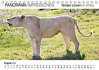Weiße Löwen in Afrika PANORAMA IMPRESSIONEN (Tischkalender 2019 DIN A5 quer) - Produktdetailbild 8