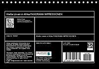 Weiße Löwen in Afrika PANORAMA IMPRESSIONEN (Tischkalender 2019 DIN A5 quer) - Produktdetailbild 13