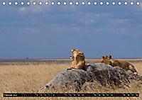 Weites Land - Safari in der Serengeti (Tischkalender 2019 DIN A5 quer) - Produktdetailbild 2