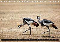 Weites Land - Safari in der Serengeti (Tischkalender 2019 DIN A5 quer) - Produktdetailbild 11