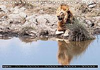 Weites Land - Safari in der Serengeti (Tischkalender 2019 DIN A5 quer) - Produktdetailbild 8