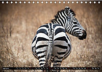 Weites Land - Safari in der Serengeti (Tischkalender 2019 DIN A5 quer) - Produktdetailbild 7
