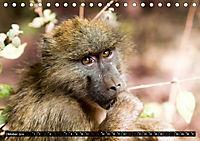 Weites Land - Safari in der Serengeti (Tischkalender 2019 DIN A5 quer) - Produktdetailbild 10