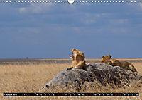 Weites Land - Safari in der Serengeti (Wandkalender 2019 DIN A3 quer) - Produktdetailbild 2