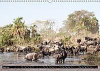 Weites Land - Safari in der Serengeti (Wandkalender 2019 DIN A3 quer) - Produktdetailbild 6