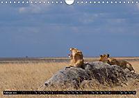 Weites Land - Safari in der Serengeti (Wandkalender 2019 DIN A4 quer) - Produktdetailbild 2