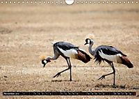 Weites Land - Safari in der Serengeti (Wandkalender 2019 DIN A4 quer) - Produktdetailbild 11