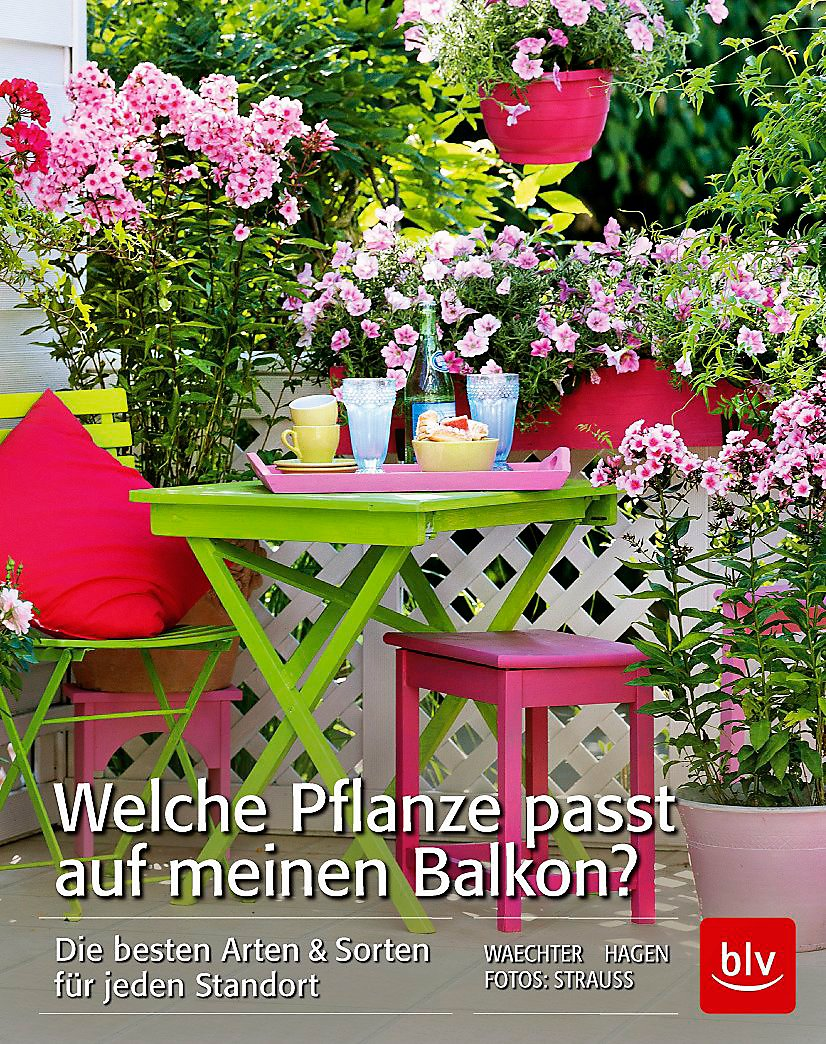 Welche Pflanze Passt Auf Meinen Balkon Buch Weltbildde