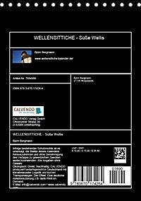 WELLENSITTICHE - Süße Wellis (Tischkalender 2019 DIN A5 hoch) - Produktdetailbild 13