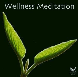 Wellness Meditation, Diverse Interpreten