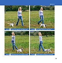Welpen-Erziehung - Produktdetailbild 14