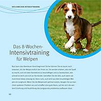 Welpen-Erziehung - Produktdetailbild 9