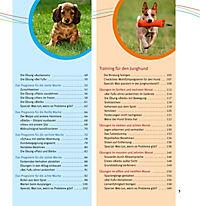 Welpen-Erziehung - Produktdetailbild 4