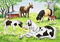 Welt der Pferde. Puzzle 2 x 24 Teile - Produktdetailbild 1
