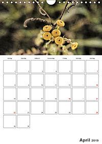 Werden und Vergehen (Wandkalender 2019 DIN A4 hoch) - Produktdetailbild 4