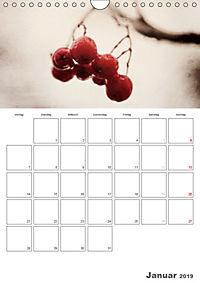 Werden und Vergehen (Wandkalender 2019 DIN A4 hoch) - Produktdetailbild 1
