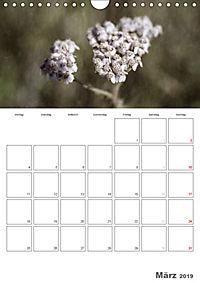 Werden und Vergehen (Wandkalender 2019 DIN A4 hoch) - Produktdetailbild 3
