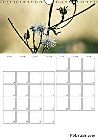 Werden und Vergehen (Wandkalender 2019 DIN A4 hoch) - Produktdetailbild 2