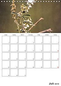 Werden und Vergehen (Wandkalender 2019 DIN A4 hoch) - Produktdetailbild 7