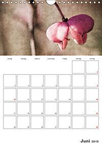 Werden und Vergehen (Wandkalender 2019 DIN A4 hoch) - Produktdetailbild 6
