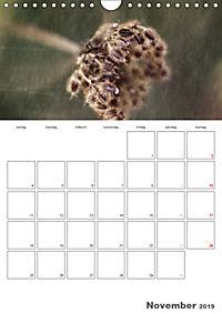 Werden und Vergehen (Wandkalender 2019 DIN A4 hoch) - Produktdetailbild 11