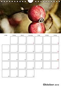 Werden und Vergehen (Wandkalender 2019 DIN A4 hoch) - Produktdetailbild 10