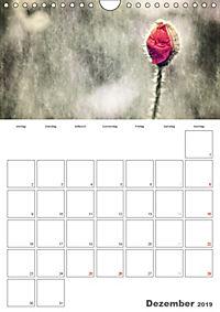 Werden und Vergehen (Wandkalender 2019 DIN A4 hoch) - Produktdetailbild 12