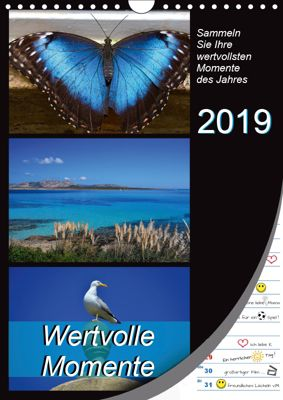 Wertvolle Momente - Sammeln Sie Ihre wertvollsten Momente (Wandkalender 2019 DIN A4 hoch), k.A. Mowaru