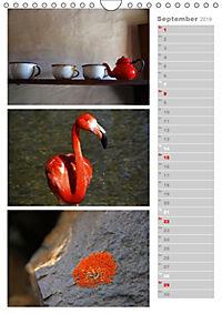 Wertvolle Momente - Sammeln Sie Ihre wertvollsten Momente (Wandkalender 2019 DIN A4 hoch) - Produktdetailbild 9